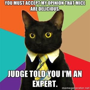 Cat_expert